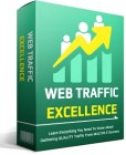 Web Traffic Excellence
